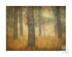 Oak Grove in Fog, Study 26 Giclee Print- Master BR