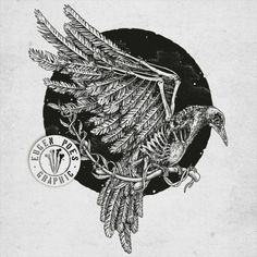 crow skull drawing - Google Search