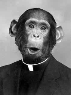 Reverend Chimp Art Print
