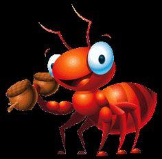 dato curioso sobre hormigas