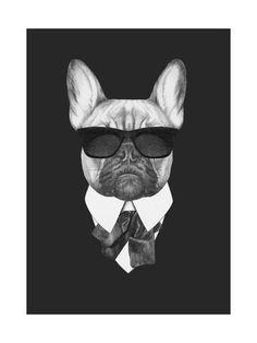 Portrait of French Bulldog in Suit. Hand Drawn Illustration. Posters par victoria_novak sur AllPosters.fr