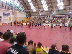 Handball News: Dunarea Calarasi - locul 5 sau locul 6?!