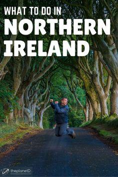 The Dark Hedges, Northern Ireland | The Planet D: Adventure Travel Blog: