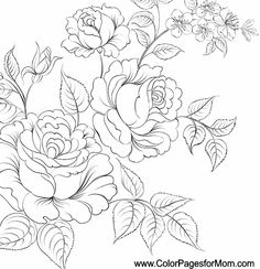 Adult Flower Coloring Pages Flowers For Adults Colouring Pictures