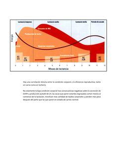 10-estrategias-para-mejorar-la-eficiencia-reproductiva-de-la-ganaderia-tropical_009