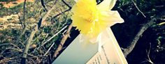 Il Linguaggio segreto dei fiori di #VanessaDiffenbaugh