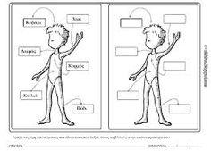 Image result for σώμα νηπιαγωγείο Special Education, Counseling, Kindergarten, Preschool, Science, Comics, Learning, Children, Blog