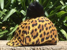 Add a bit of personality to your helmet Helmet Covers, Horse Fly, Personality, Horses, Horse, Words