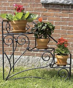 Another great find on #zulily! Right Peacock Steps Plant Stand by ACHLA #zulilyfinds