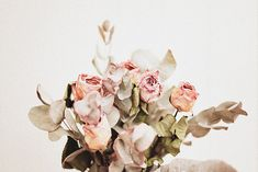 Saved by erin enns (erinenns). Discover more of the best Image, Roses, and Flowers inspiration on Designspiration Jeanne Damas, Lady Dior, Pinterest Women, Love Style Life, Delphine Manivet, Face Yoga, Second Hand, Vintage Denim, Vintage Lace