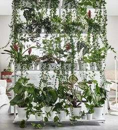 Love this plant divider   10 Decorating Tips from the New 2018 IKEA Catalogue   Poppytalk