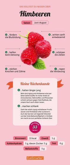 Das solltest du über Himbeeren wissen | eatsmarter.de #himbeeren #infografik #beeren