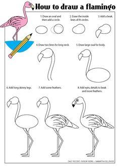 How to draw a flamingo