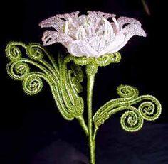 Boa's Botanicals - Cosmic Spring