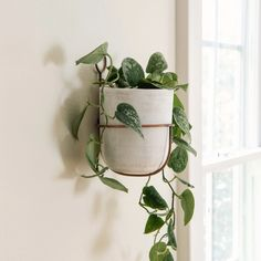 Hanging Wall Planters, Diy Hanging, Hanging Baskets, Garden Planters, Planter Pots, Planting Tools, Magnolia Table, Candles For Sale, Artificial Silk Flowers