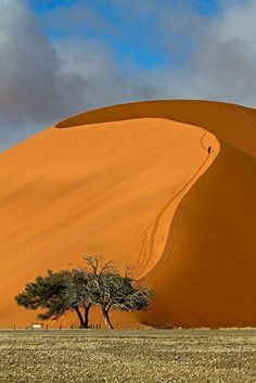 Traveler Photo Contest: Outdoor Scenes PHOTOGRAPH AND CAPTION BY MARCO TAGLIARINO Namibia