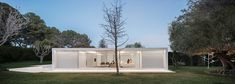 Guest Pavilion. Pabellón de Invitados. Architecture by Fran Silvestre Arquitectos #FranSilvestreArquitectos #AlfaroHofmann #FernandoGuerra #housebetweenthepineforest #casaentrelapinada #Spain #architecture #arquitectura #house #building #archilovers #architect #pine #white #light #archdaily #minimal #refurbishment #minotti #night #swimmingpool #exterior #guestpavilion #pabellóndeinvitados #reforma #jardin #naturaleza #pabellón #pavilion #arquitecturacontemporanea #minimalwindows