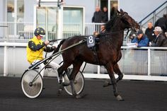 (Prix de Belgique) Briac Dark la victoire époustouflante !