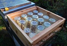 How to encourage honeybees to build honeycomb inside glass jars. Via Lovely Greens Bee Hive Plans, Beekeeping For Beginners, Honey Bee Hives, Raising Bees, Bee Boxes, Bee Farm, Backyard Beekeeping, Save The Bees, Bees Knees