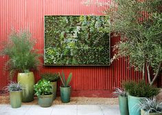Vertical garden at Flora Grubb Gardens in San Francisco.  So artistic -great balance and use of various species, space, shapes, heights, textures, vessels.