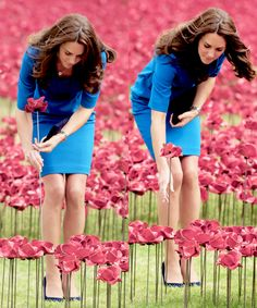 8/5/14 Kate planting a poppy at the Tower of London to commemorate WW1.