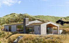 Sedum græs på taget