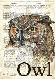 летать обувь художественную студию: OWL