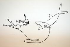 STEVE LOHMAN shark.jpg