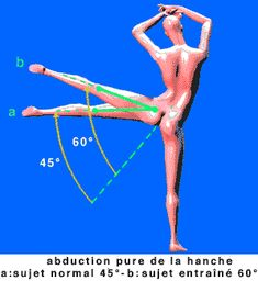 abduction de la hanche