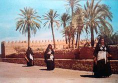 Women walking arround some palms garden.  Tiznit/ morocco.