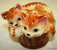 2 cats in the basket