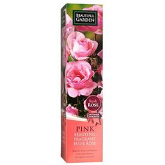 Bush Rose - Pink | Poundland