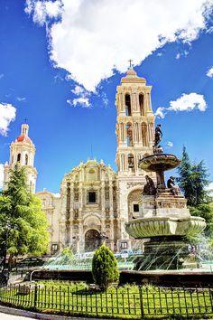 Saltillo, Coahuila. MÉXICO.