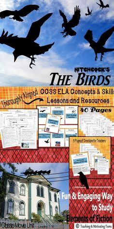 A favorite among students   a fun  engaging  and educational way to learn  Pinterest