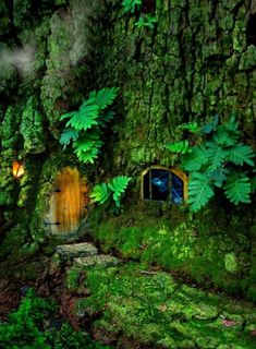 Ideas Wood House Forest Fairy Tales For 2019 Forest Fairy, Fairy Land, Fairy Tales, Woodland Fairy, Bonsai, Magic Garden, Fairy Garden Houses, Fairy Gardens, Gnome House
