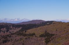 Shining Rock and Cold Mountain in the Shining Rock Wilderness of Pisgah National Forest. This view is from 6020' Tennent Mountain.