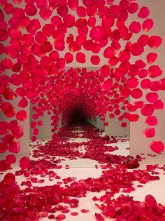 Sarah Meyohas Red Petals Photography