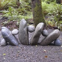 Rock garden – nice touch