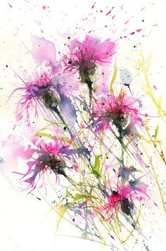Contemporary animal and floral art prints from original watercolour paintings. Description Ref: 3849 This is a limited edition print of my original watercolour painting knapweeds. I sign each print individually and place in a cellophane bag. Abstract Flowers, Watercolor Flowers, Watercolor Art, Watercolour Paintings, Watercolours, Watercolor Pencils, Watercolor Pictures, Arte Floral, Flower Art
