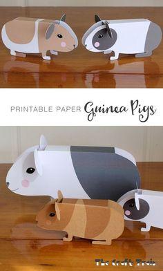 Tendance Bracelets  Free printable paper guinea pigs