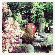 Garden / zen taken from Instagram/cecilekdjian