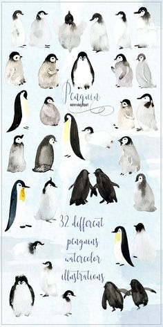 Penguins. Watercolor clipart by LABFcreations on @creativemarket #penguins #cute #winter