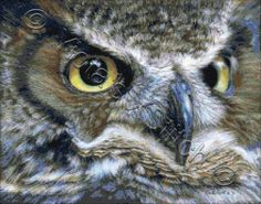 Dark owl | Yiotas XStitch