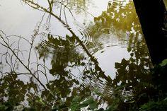 Circles on the water / cerchi sull'acqua
