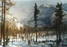 Winter forest in East Sayan. Siberia, Russia.