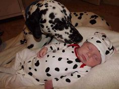 Beautiful Pets and Their Babies...Ƹ̵̡Ӝ̵̨̄Ʒ❤