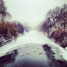 Berlin - Spree River in January