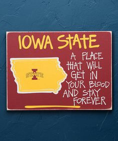 This Iowa State Cyclones Ames Map Wall Sign is perfect! #zulilyfinds