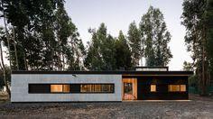A minha futura casa no meio de uma floresta de eucaliptos no Chile: House 39, Alex Plana >>> http://amusedbrain.wordpress.com/2013/04/24/a-minha-futura-casa-no-chile-house-39-alex-plana/
