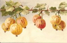 """stylized realism of Catharina Klein - """"A Donation of Fruit,"""""""
